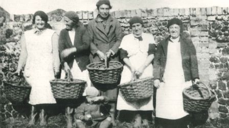 People picked potatoes by hand in the past (no machinery then!) and Gressenhall like to work in the