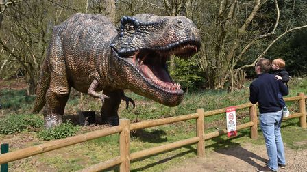 The dinosaurs are a big attraction at Roarr! Dinosaur Adventure. Pic: Sonya DuncanCopyright: Archan