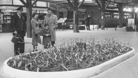 Railway staff watering tulips at Lowestoft Central Train Station in April 1953. Picture: Archant Lib