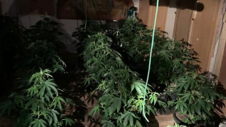 Breckland police along with officers from Thetford, Attleborough and operation moonshot, seized 68 c