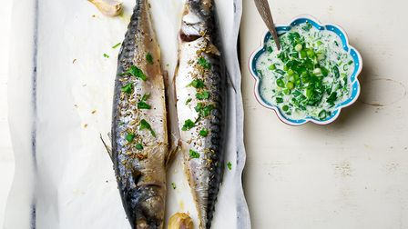 Oily fish such as mackerel can help to heal the gut Picture: Getty Images