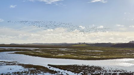 Cley Marshes in north Norfolk. Picture: Richard Osbourne