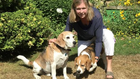 Hector the Beagle uses a wheelchair to help him get around. Victoria Haddon has written a book abou