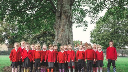 New pupils beginning school life at Cawston Primary Academy in 2019. Picture: J Mawe Photography