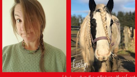 Redwings Horse Sanctuary is inviting people to submit photos of their lockdown hair, to be matched w