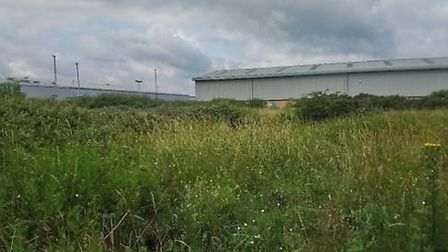 The undeveloped piece of land in Lowestoft that will site the ultra-fast broadband hub. The view loo