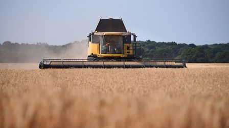 The need for greater transparency on imported grain standards was discussed at the Cereals Live 2020