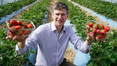 Norfolk fruit grower Tim Place is 'very pleased' with his new workforce after the firm was deluged w