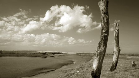 Haunting beauty of Thornham Creek top of list for a back-to-nature campaign