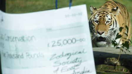 Sveta pictured last year helping raise money for the zoo charity. Pic: Archant