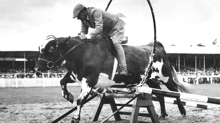 A cow jumps through a hoop of fire at the 1964 Royal Norfolk Show. Picture: C0214