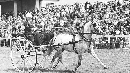 An 1876 Skelton Gig was the winning exhibit in the driving class at the Roayal Norfolk Show 1967 e