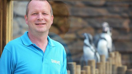 Sea Life manager Nigel Croasdale is looking forward to welcoming visitors back Picture: Ian Burt