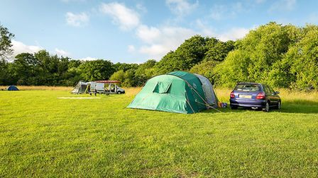 Canal Camping, Dilham is open for summer 2020 Pic: Canal Camping