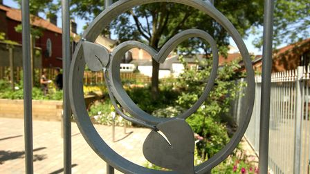 Grapes Hill Community Garden opened to the public for the first time today, official opening on the