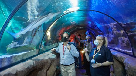 Nigel Huddleston is given a tour of the Sea Life Centre, Great Yarmouth by manager Terri Harris. Pic