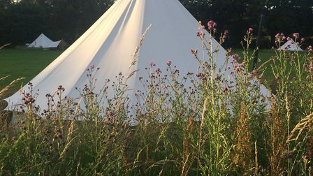 Amber's Bell Tent Camping has sites at Wiveton Hall, Mannington Hall and Hoveton in Norfolk. Picture
