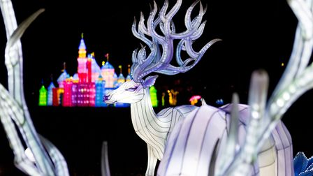 A scene from Thursfords Enchanted Journey of Light, which is being run in 2020 because the usual Chr