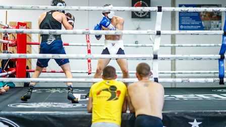 Ryan Walsh and Chris Bourke sparring - with brothers Liam and Michael at ringside Picture: Mark Hewl