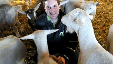 Sam Steggles and his goats which make Fielding Cottage goat's cheese.