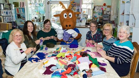 Some of the Dereham knitters taking part in the Carnival's Big Knit. Picture: Michael Lyons Photography