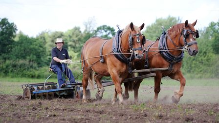 Gressenhall Farm is taking part in Open Farm Sunday - with visitors getting access to many different