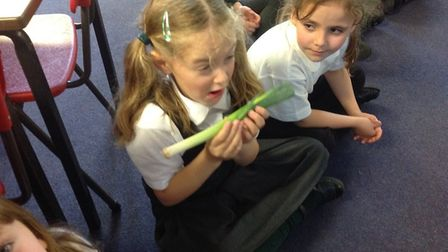 Pupils at Toftwood infants learnt about Harvest. Picture: Toftwood Infants