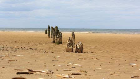 Various shells and finds along the lovely sandy beach at Titchwell. Picture: Richard Brunton