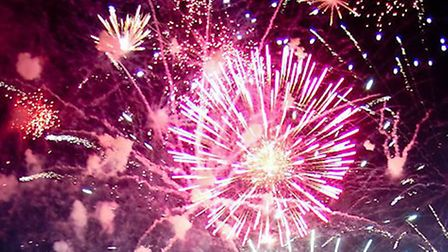 Fireworks: It's time to bring in new laws to stop selfish people setting them off in their garden al