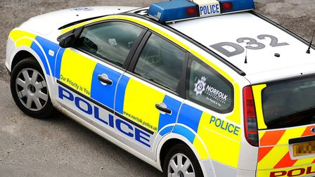 Generic image of a police car belonging to the Norfolk Constabulary.Picture: James Bass