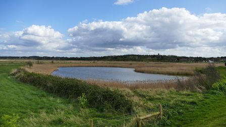 View from the bank at Blakeney Photo: Lesley Buckley