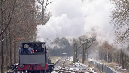 Reepham and Whitwell Railway Station steam day.Picture: Nick Butcher
