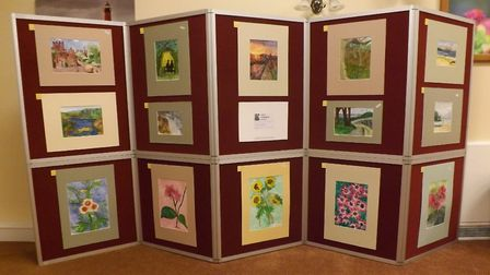 Janet Goodman's art on display. Picture: Malcolm Hedley