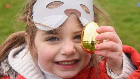 Cardi North-Davies, three, finds a golden egg at the Dereham Windmill's annual Easter Egg Hunt. Pict