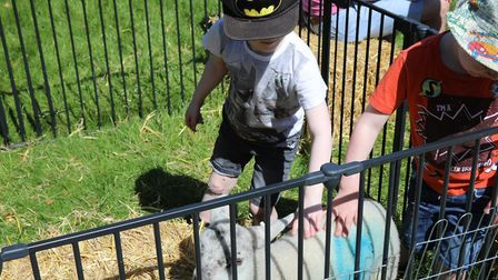 Wensum Valley Nursery School Spring Fayre 2018. Children met a lamb and a rabbit. Picture: HELENA RI