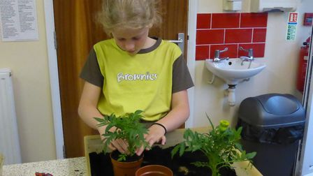 Members of Toftwood Brownies doing a random act of kindness for their local community. Photo: Toftwood Brownies