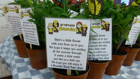 Members of Toftwood Brownies doing a random act of kindness for their local community. Photo: Toftwo