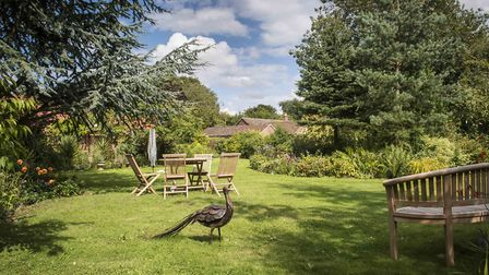 Three gardens will be welcoming visitors this September for the National Garden Scheme (NGS) in Norf