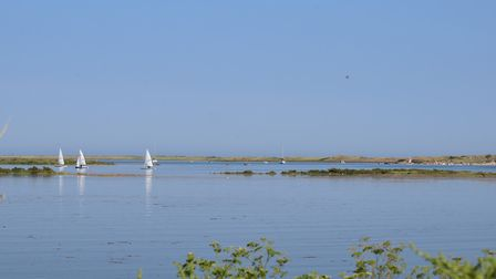 The bank at Overy Staithe looking towards the harbour mouth. Photo: Stephanie Thompson