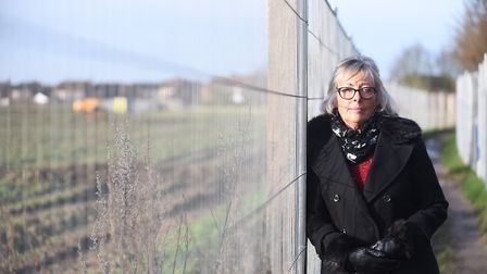 District councillor Alison Webb believes residents of the new Greenfields development need more outd