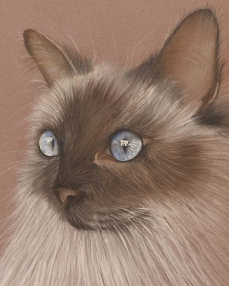 Lauren Gorbould is an incredibly talented young artist who specialises in pet portraits. Picture: Ia