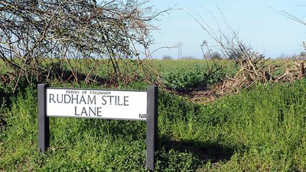 Part of the Rudham Stile Lane site. Picture: Matthew Usher.