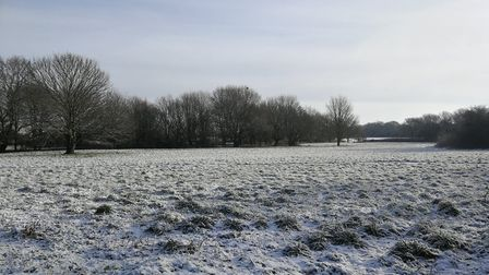 Neatherd Moor in Dereham in the snow January 30, 2019. Picture: DONNA-LOUISE BISHOP