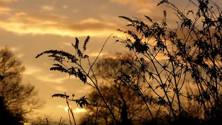 Beautiful sunset. Picture: Lesley Buckley