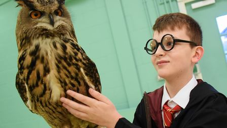 Sean Laban, 12, as Harry Potter, meets three-year-old Caesar, a European eagle-owl from Norfolk Wild