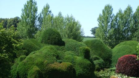 Swannington Manor is taking part in the village's open gardens event. Picture: JEREMY SMITH