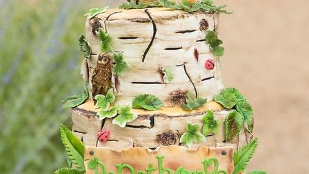 Pensthorpe Natural Park celebrates its 30th anniversary this week. Special 30th anniversary cake. Pi