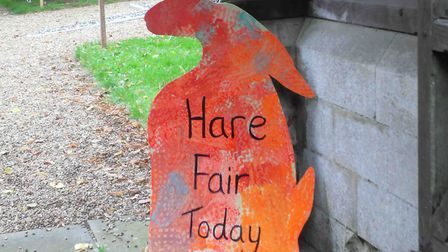 Docking Hare Fair. Picture: Peter Cook