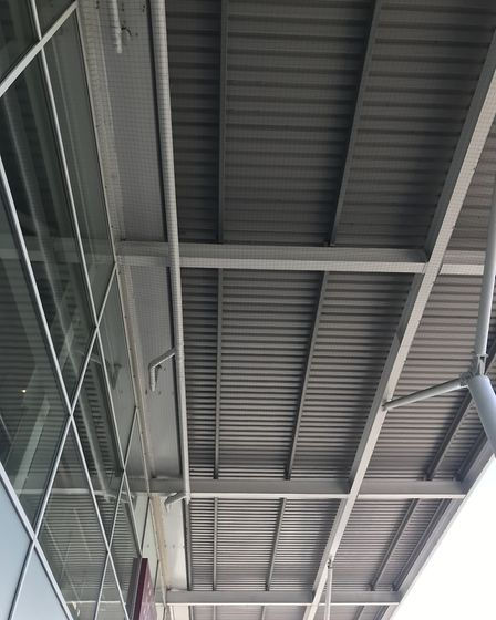 Netting has been installed around the perimeter of the Tesco Extra in Dereham. Picture: SUE COLE