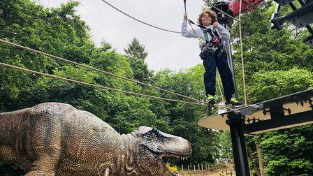 Easter 2019 at Roarr! Dinosaur Adventure. Pictured is a child having fun on the high ropes. Picture: